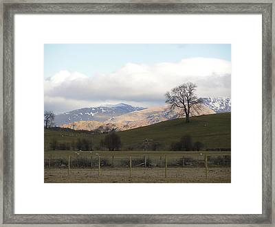 Framed Print featuring the photograph A Walk In The Countryside In Lake District England by Tiffany Erdman