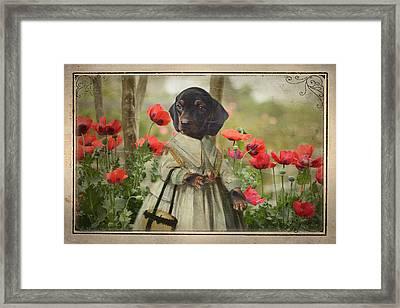 A Walk In The Garden Framed Print by Terry Fleckney