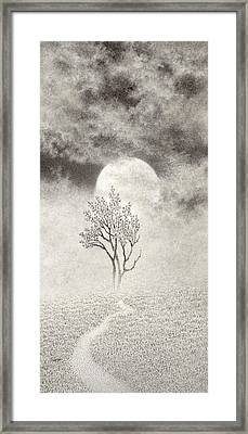 A Walk In The Moonlight Framed Print by Mark  Reep