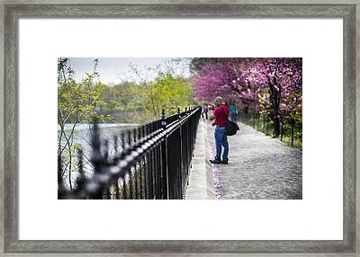 A Walk In The Park Framed Print by Chris Halford