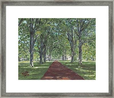 Washington Crossing State Park Framed Print