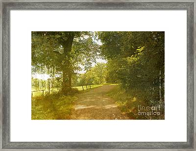 A Walk In The Park  Framed Print by Ivy Ho