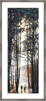 A Walk In The Park Framed Print by Paulette B Wright