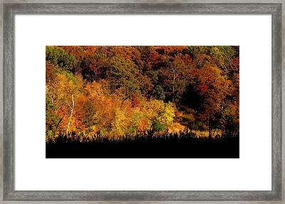 A Walk In The Park - Sunset In Autumn Framed Print by Bridget Johnson