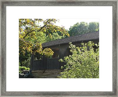 Framed Print featuring the photograph A Walk In The Park by Tiffany Erdman