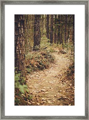 A Walk In The Woods Framed Print by Heather Applegate