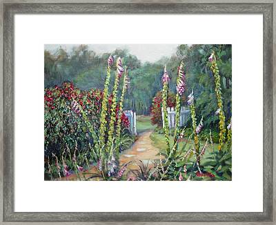 A Walk Into The Garden Framed Print