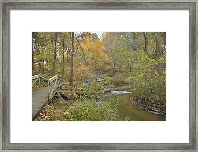 A Walk Next To The Creek Framed Print by Cim Paddock