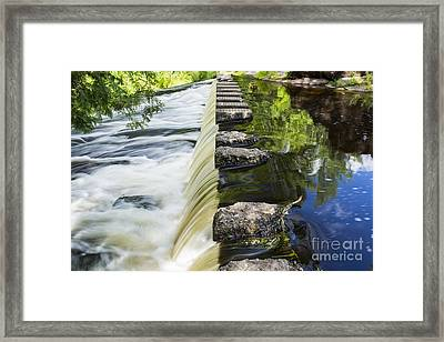 A Walk Of Life... Framed Print