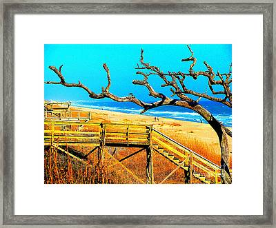 A Walk On Atlantic Beach Framed Print