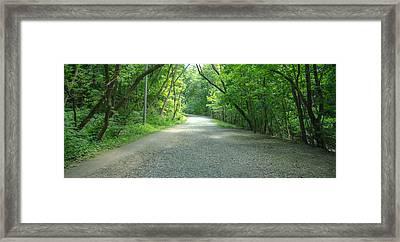 A Walk Through Rosedale Framed Print by Eric Dewar