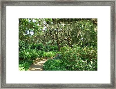 A Walk Through The Garden Framed Print by Bob Sample