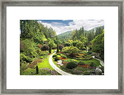A Walk Through The Paradise Gardens Framed Print