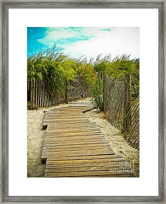 A Walk To The Beach Framed Print by Colleen Kammerer