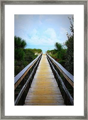 A Walk To The Beach Framed Print