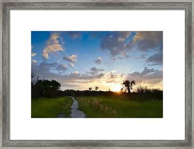 A Walk With You... Framed Print by Melanie Moraga