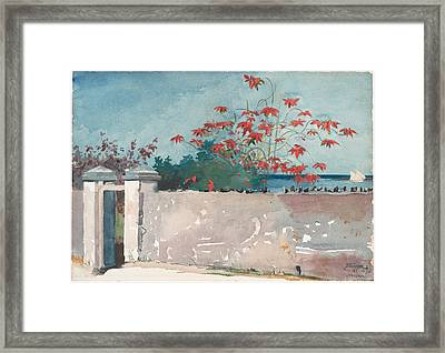 A Wall Nassau Framed Print by Celestial Images