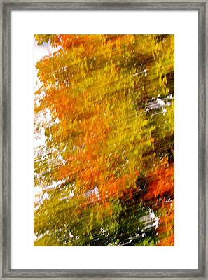 A Warm Day Framed Print by Jocelyne Choquette