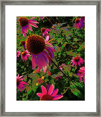 Framed Print featuring the photograph A Warm Spring by Diane Miller