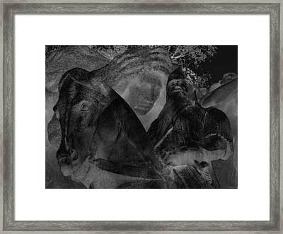 A Warrior's Mount Framed Print