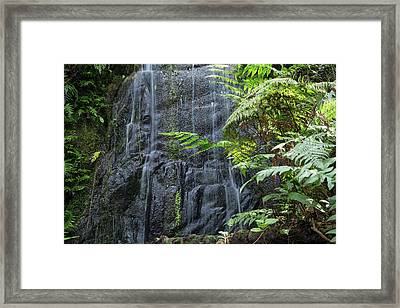 A Waterfall In The Mountain Jungles Framed Print