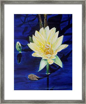 A Waterlily Framed Print by Marilyn  McNish