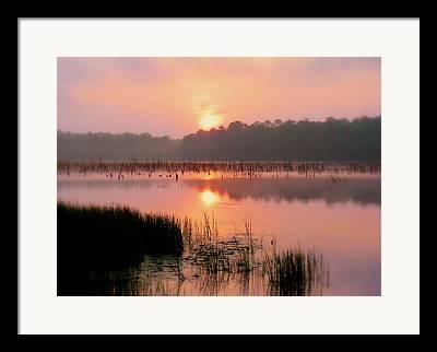 Dothan Alabama Framed Prints