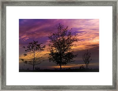 A Whisper In Nature Framed Print by Melanie Moraga