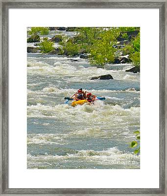 A Wild Ride Framed Print