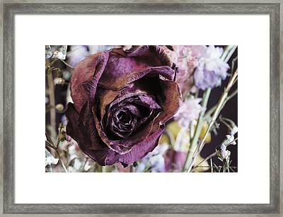 A Wilted Bouquet Framed Print by Angi Parks