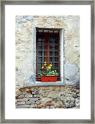 A Window In Tuscany Framed Print by Mel Steinhauer