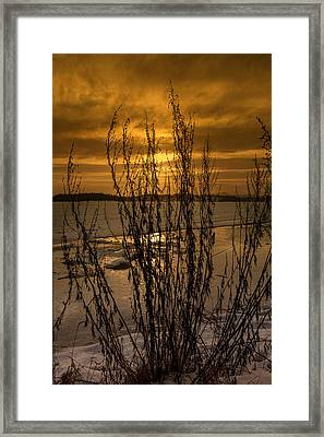 A Winter Day Framed Print by Thomas Berger
