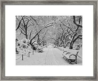 A Winter Garden Framed Print by Cornelis Verwaal