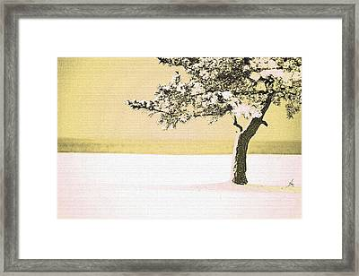 A Winter Moment Framed Print by Karol Livote