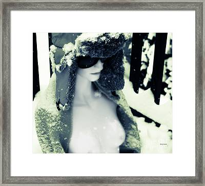 A Winter Pale  Framed Print by Steven  Digman