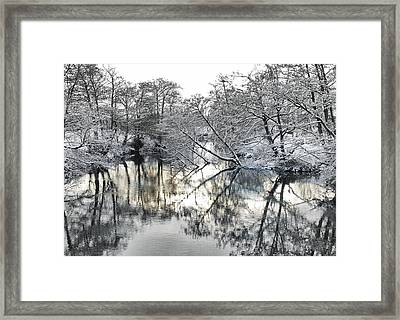 Framed Print featuring the photograph A Winter Scene by Paul Gulliver