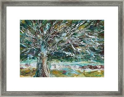 A Winter Tree Framed Print by Mary Wolf