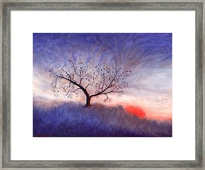 A Wintering Tree Framed Print