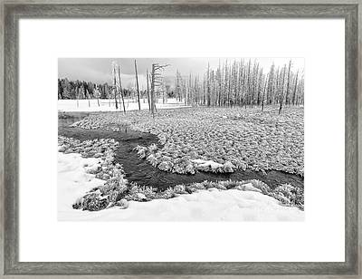 A Winter's Afternoon In Yellowstone Framed Print by Sandra Bronstein