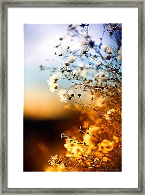 A Winter's Sunset Framed Print