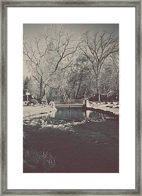 A Winter's Tale Framed Print