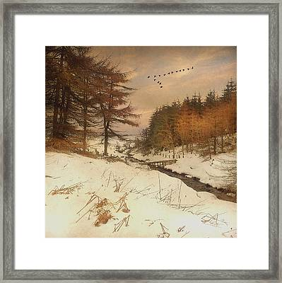 Framed Print featuring the photograph A Winters Tale by Roy  McPeak
