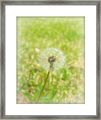 A Wish Framed Print by Lorraine Heath