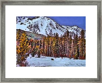 Lone Wolf Framed Print by Withintensity  Touch