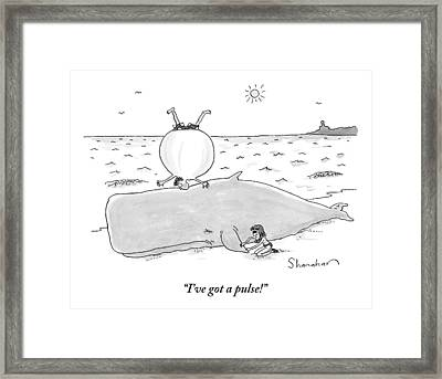 A Woman Finds A Pulse On A Beached Whale Framed Print by Danny Shanahan