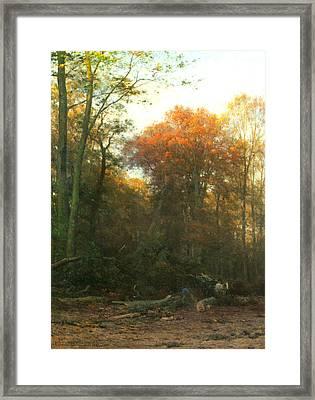A Woodcutter At Work Framed Print by Geraldine Jacoba Van De Sande Bakhuyzen