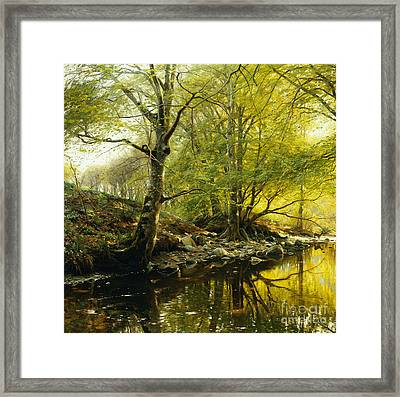 A Wooded River Landscape Framed Print