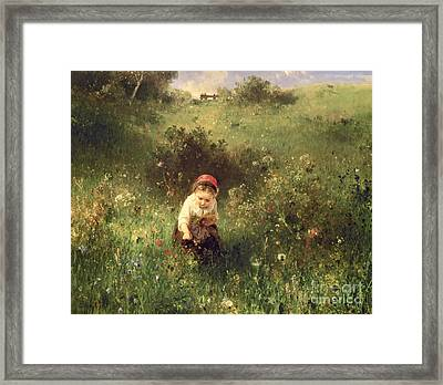 A Young Girl In A Field Framed Print by Ludwig Knaus