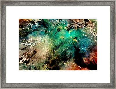 A001 Framed Print by Billy Roberts