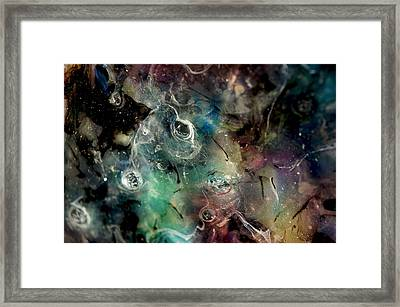 A005 Framed Print by Billy Roberts